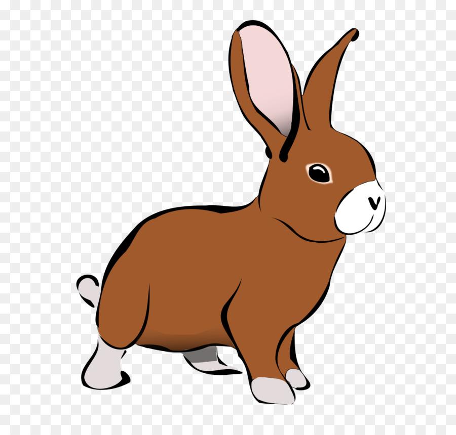 rabbit hare clip art rabbit cliparts png download 800 1041 rh kisspng com clip art rabbit coming out of a hat clip art rabbit coming out of a hat