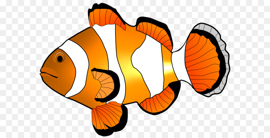 fish clip art clownfish cliparts png download 1123 794 free rh kisspng com cute clownfish clipart