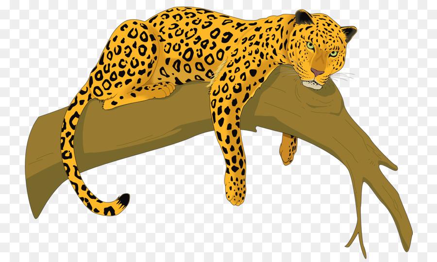 cheetah amur leopard felidae clip art leopard png download 800 rh kisspng com leopard print clip art leopard clipart outline