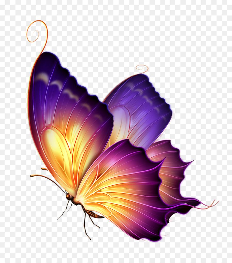 Butterfly Color Purple Clip Art