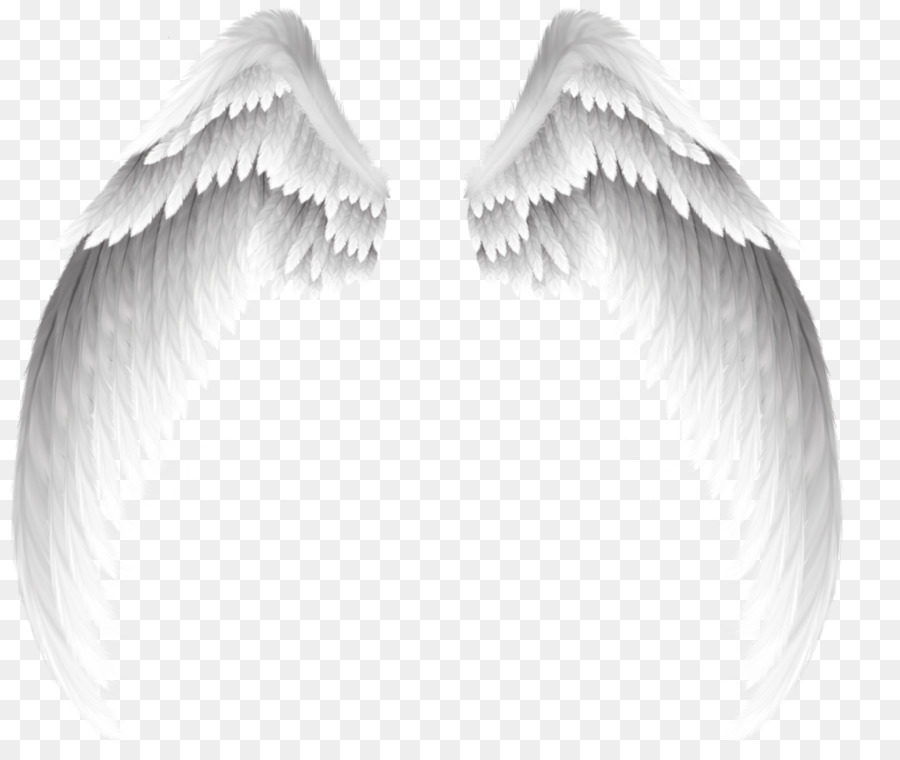 Angel clip art pretty white angel wings png download 1024845 angel clip art pretty white angel wings thecheapjerseys Images