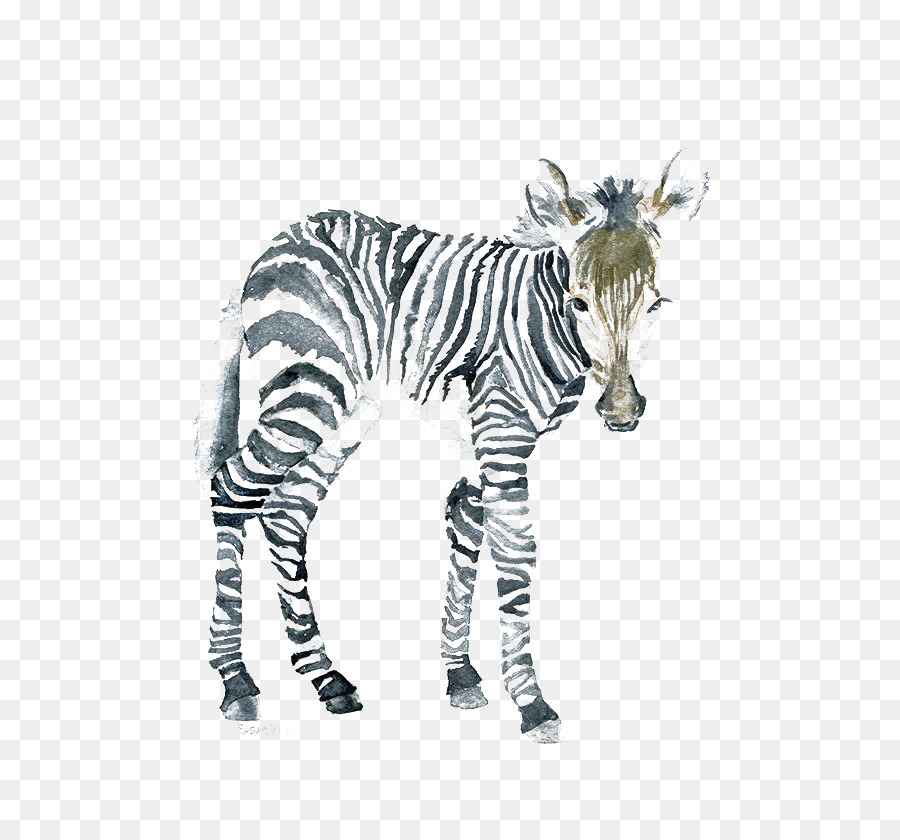The art of painting zebra watercolor painting canvas zebra png the art of painting zebra watercolor painting canvas zebra altavistaventures Gallery