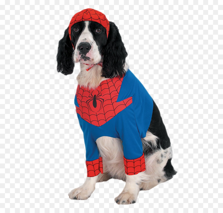 Spider-Man Dog Iron Man Costume Pet - Spiderman costumes puppy & Spider-Man Dog Iron Man Costume Pet - Spiderman costumes puppy png ...