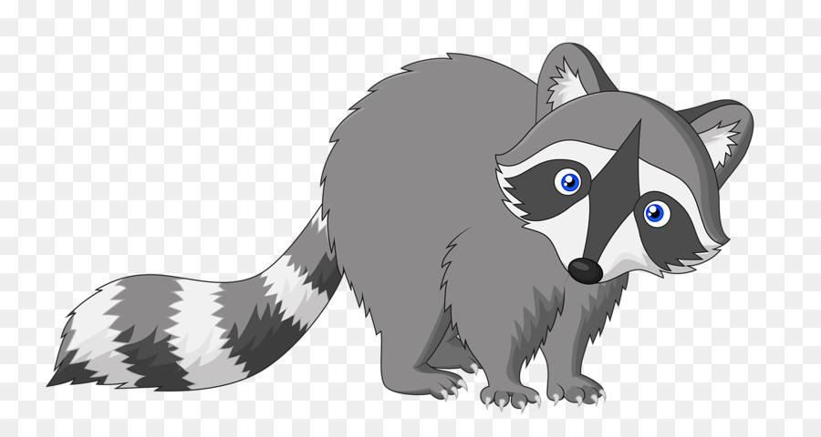 raccoon cartoon drawing cartoon raccoon png download 800 475
