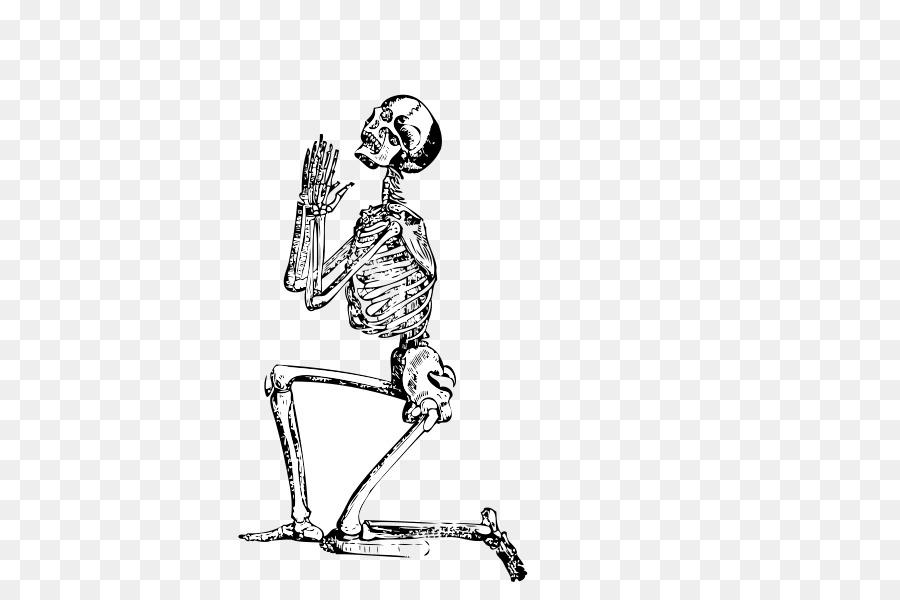 Menschliches Skelett-Gebet Clip-art - Die Knie, Skelett Rahmen png ...