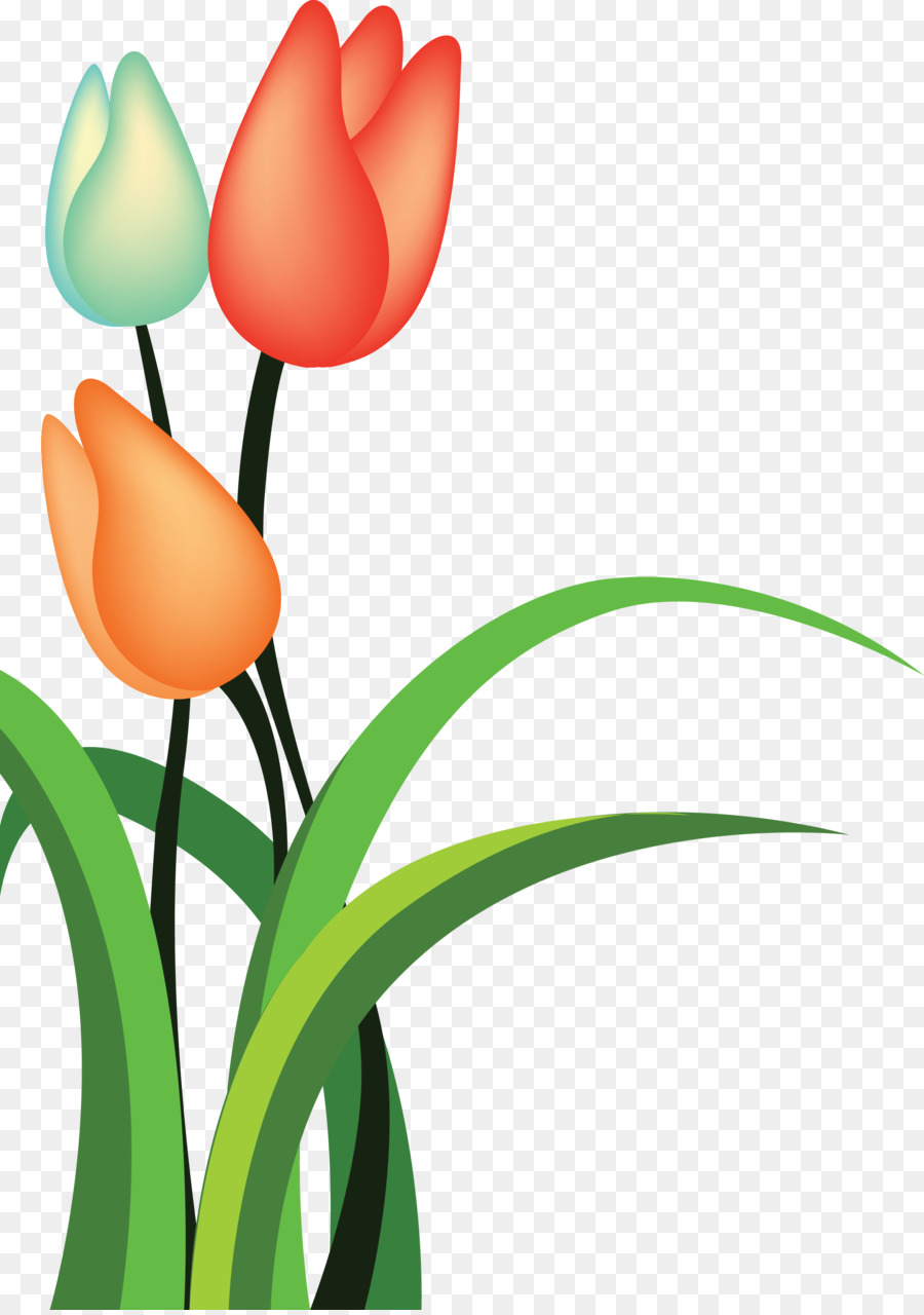 Tulip Cartoon Flower Tulip Png Download 22443179 Free