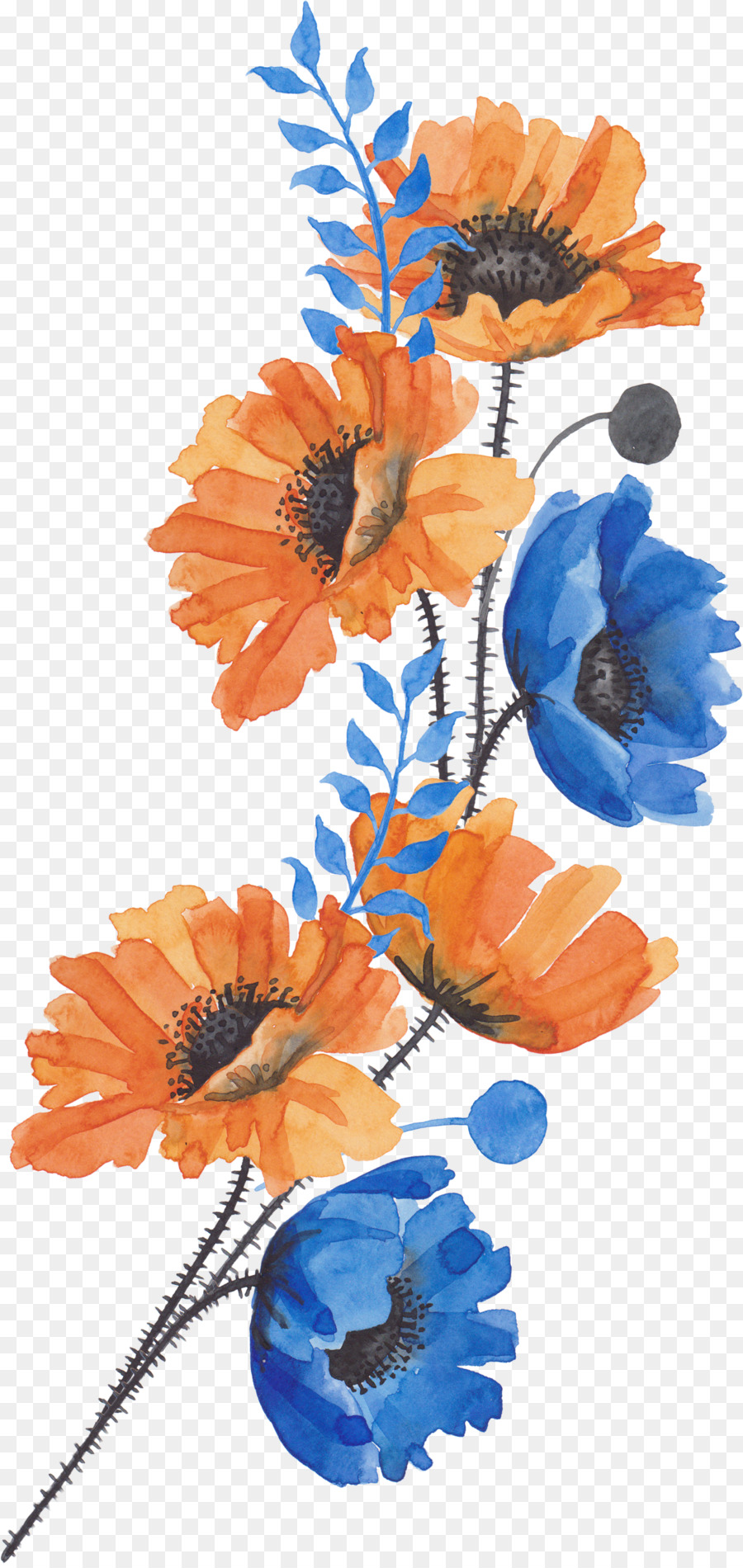 Common poppy Flower - A bouquet of flowers png download - 1638*3449 ...