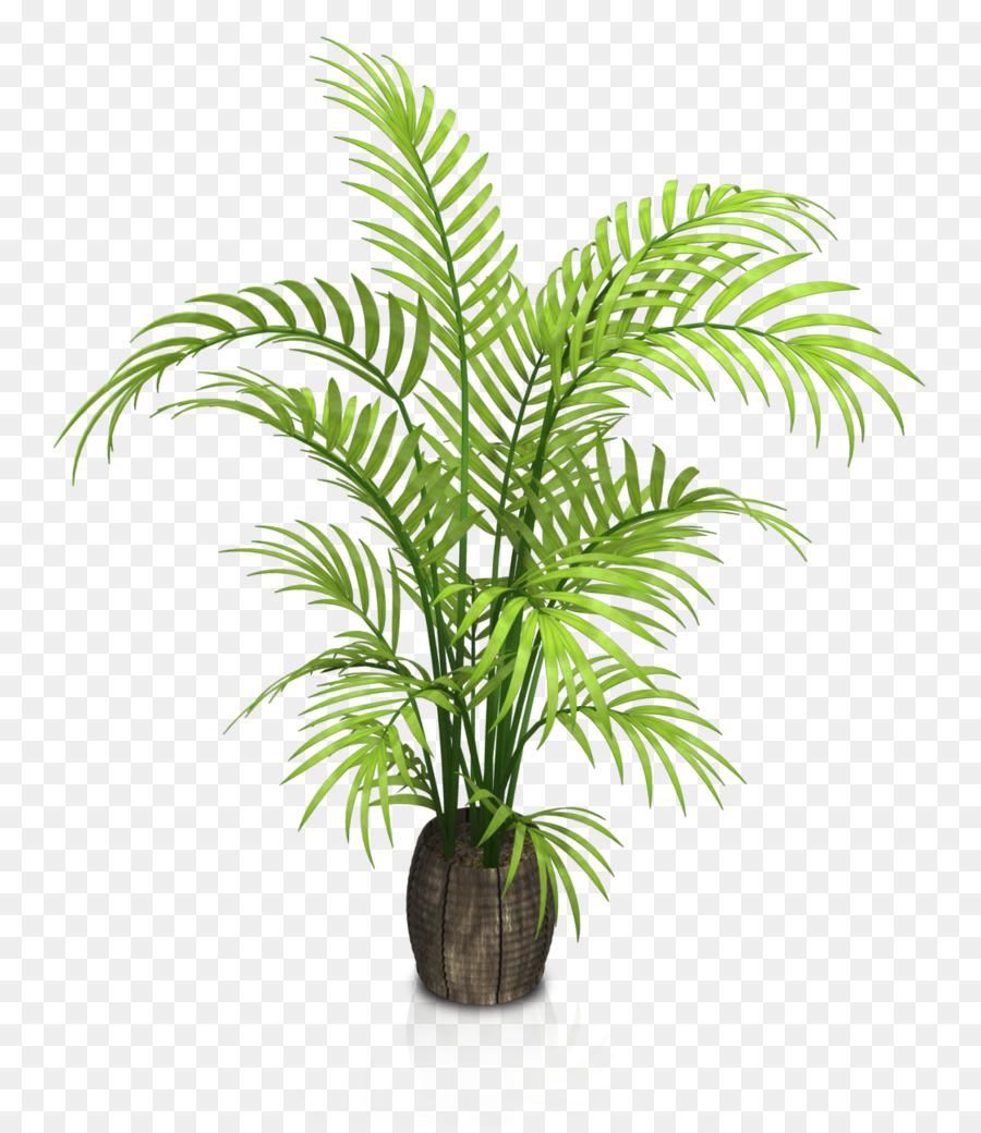 Houseplant Flowerpot - Indoor potted plants png download - 1119*1286 ...