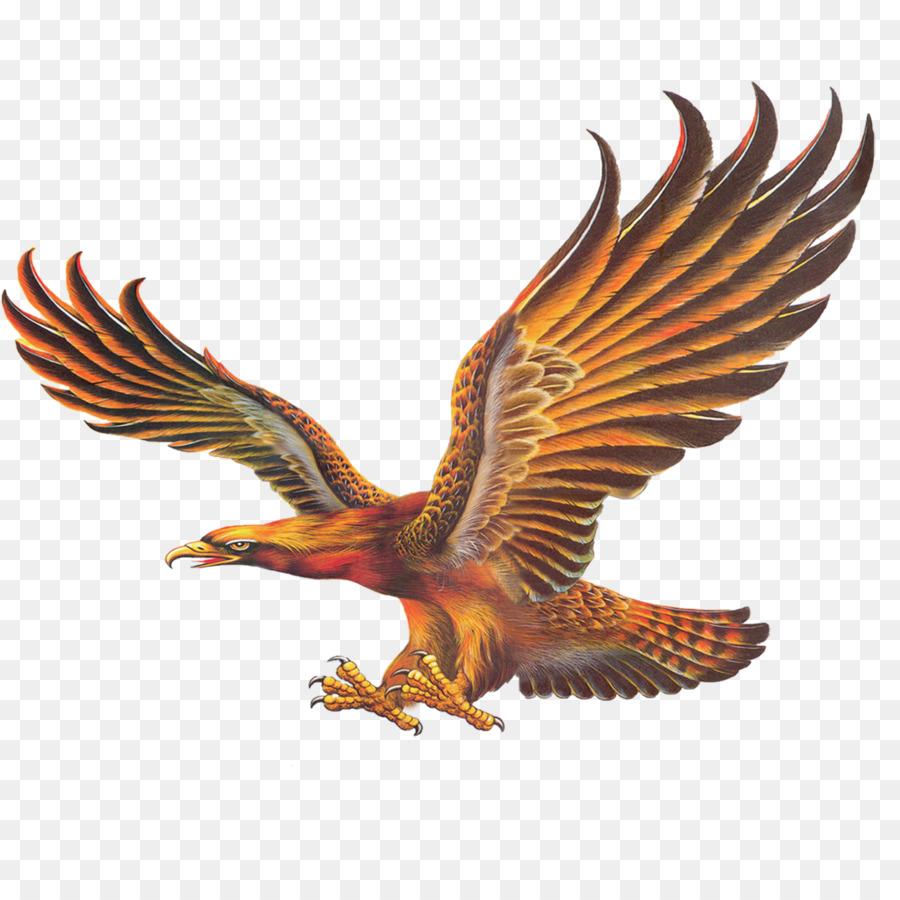 Chino pintura Mural Águila fondo de pantalla - águila Formatos De ...
