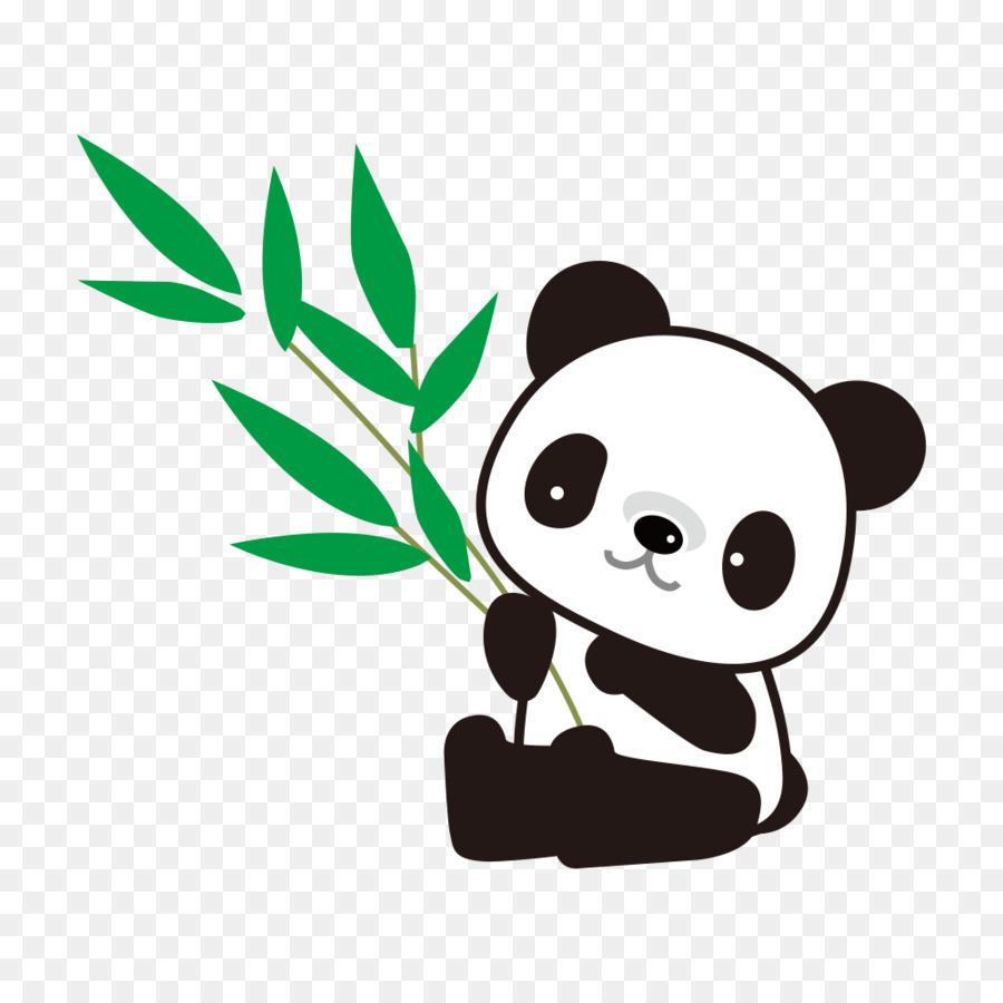 Riesen Panda Bambus Zeichnung Panda Png Herunterladen 1000 1000