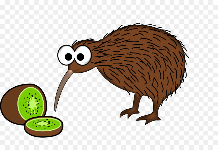 Bird New Zealand Cartoon Clip art - Kiwi Bird png download ...