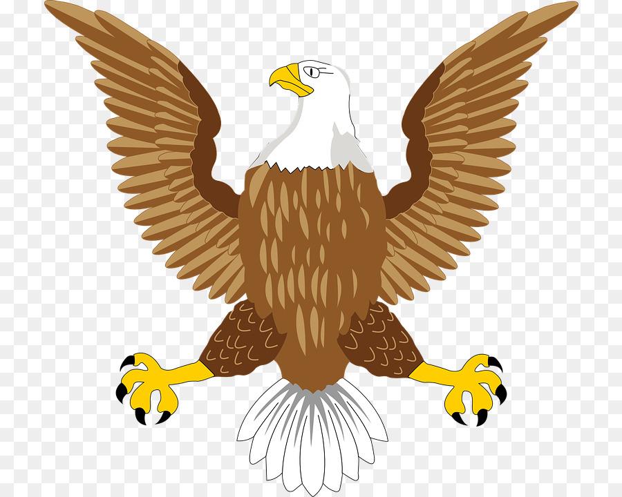 Bald Eagle Bird Symbol Eagle Symbol Png Image Png Download 774