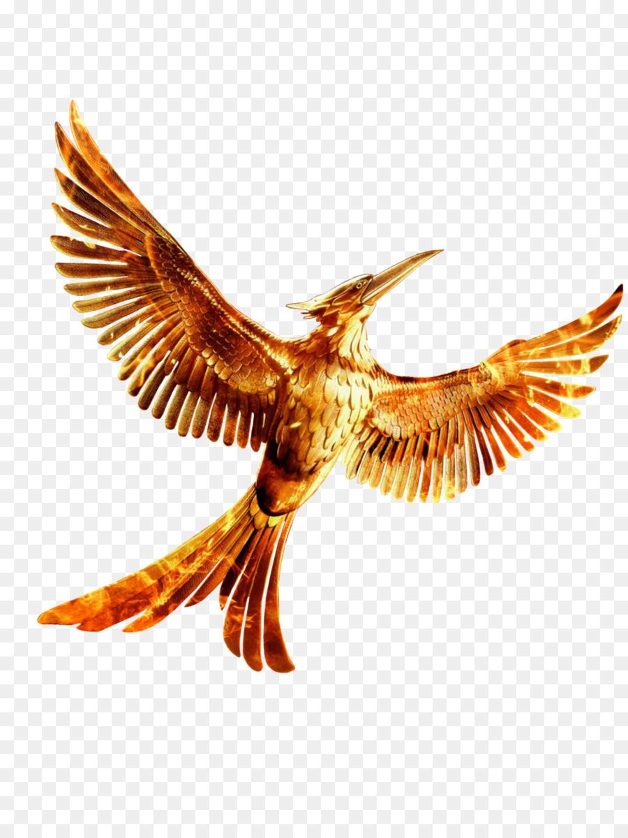 Mockingjay Bird In Real Life