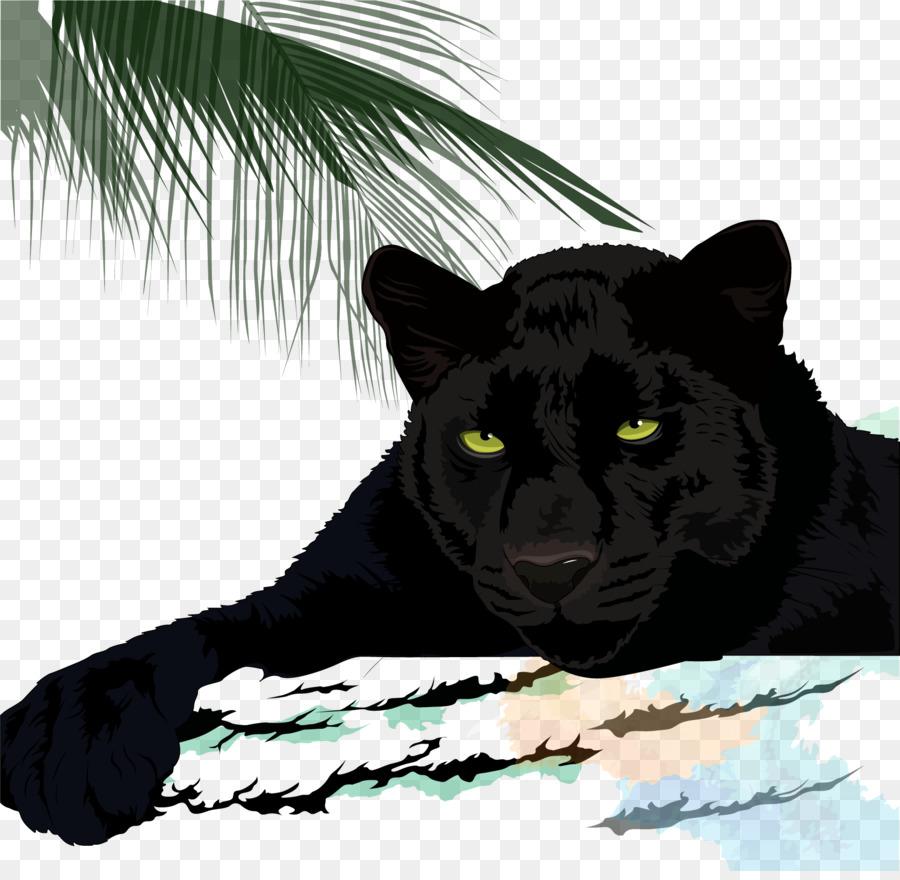 Black cougar pics