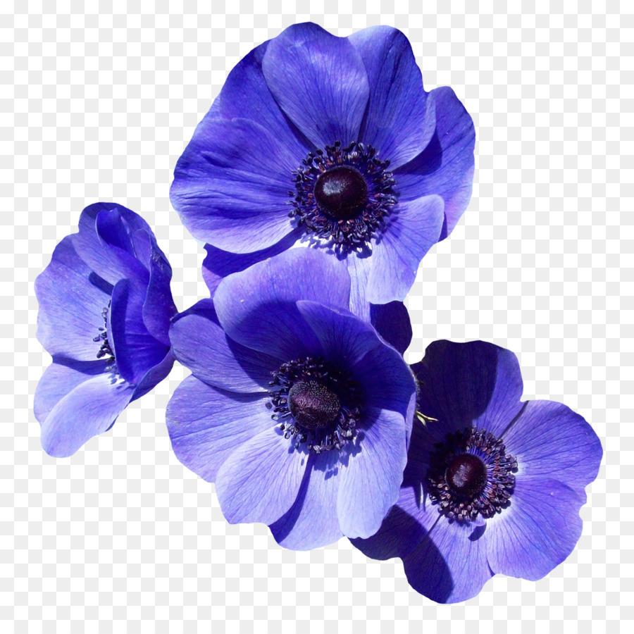 Flower Purple Clip Art Purple Flower Png Download 12001195