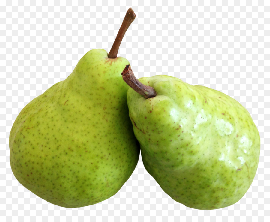 Asian pear fruit pear png download 1248*1005 free transparent