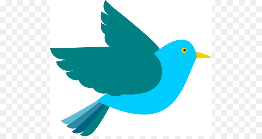 eastern bluebird clip art google images clipart png download 555 rh kisspng com bluebird clip art images bluebird clip art images