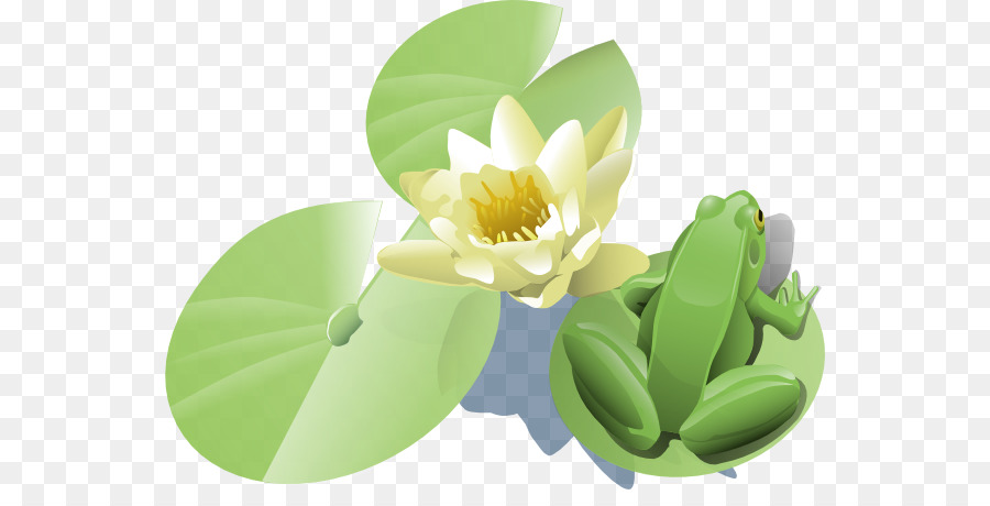 Frog Water Lilies Clip Art Frog On Lily Pad Tattoo Png Download