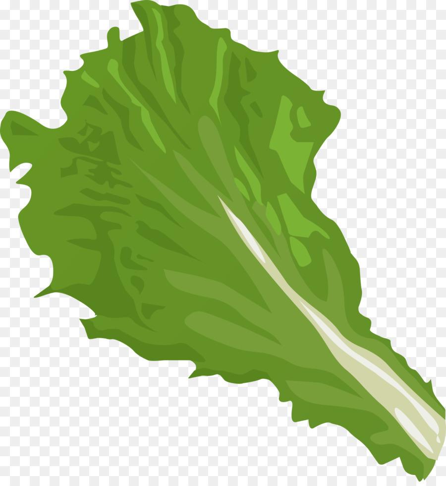 iceberg lettuce romaine lettuce vegetable clip art big leaves rh kisspng com lettuce clipart black and white lettuce free clip art