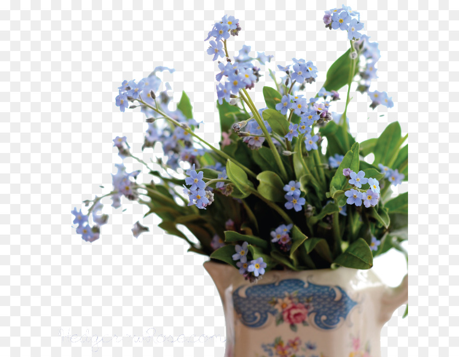 Scorpion grasses forget me not png pic png download 700700 scorpion grasses forget me not png pic mightylinksfo
