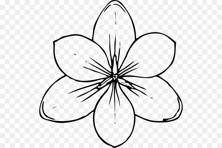 Libro para colorear de Flores Niño magnolia - Tropical Línea De ...