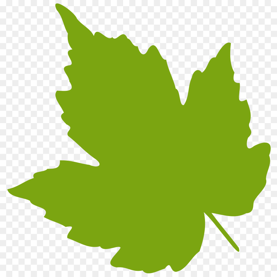 grape leaves clip art oak leaf vector png download 900 900 rh kisspng com free leaf vector art pot leaf vector art