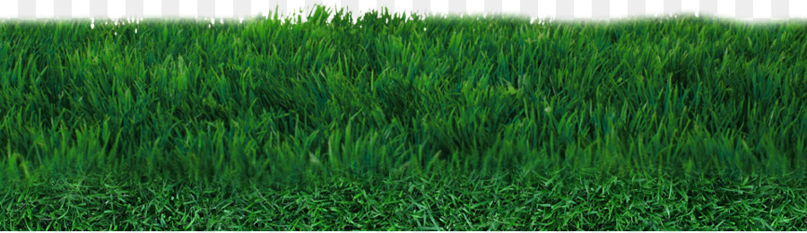 artificial football turf. Lawn Football Pitch Artificial Turf - Field PNG Transparent