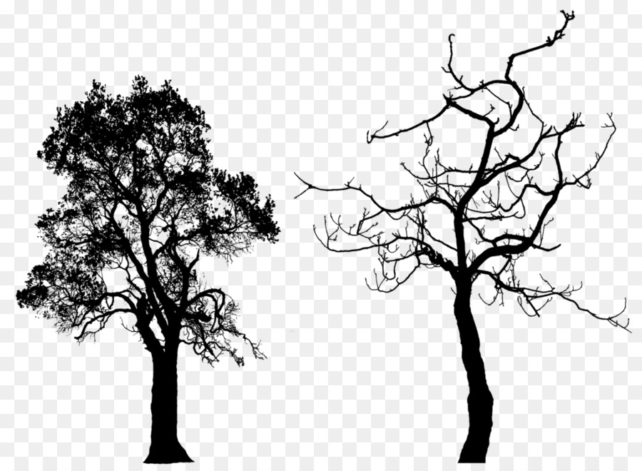 Tree Silhouette Clip Art Free Tree Silhouette Png Download 1024