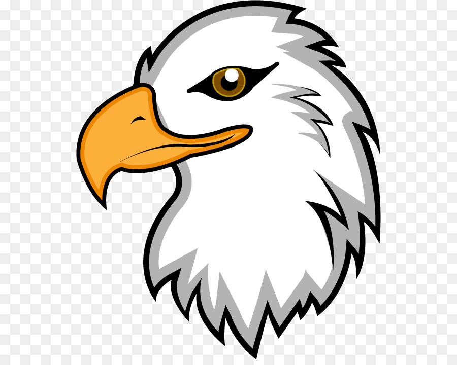 bald eagle clip art eagle mascot clipart png download 600 709 rh kisspng com eagle head mascot clipart eagle mascot clipart free