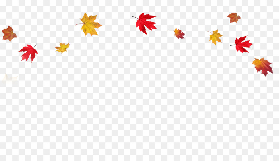 Autumn leaf color Clip art Transparent Fall Leaves Border PNG png