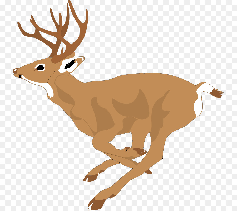 white tailed deer running clip art free deer pictures png download rh kisspng com free deer clipart black and white free clipart deer antlers silhouette