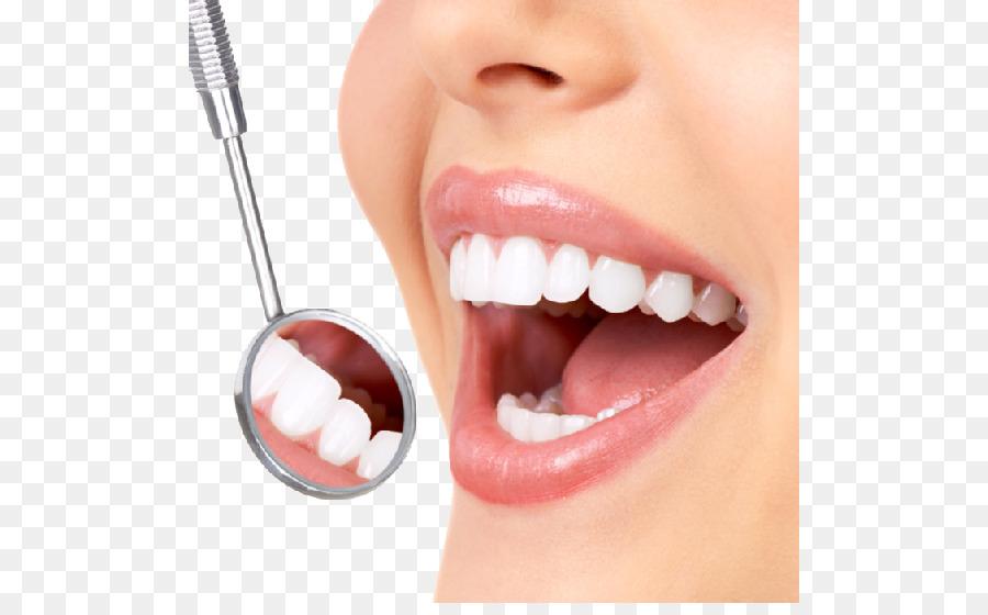 Odontología de blanqueamiento de Dientes Humanos de la Corona del ...