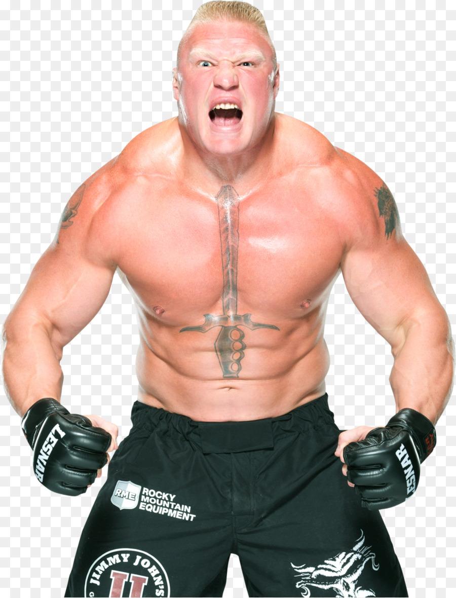 Brock Lesnar Professional Wrestling