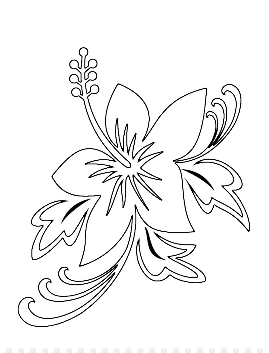 Drawing flower pencil symmetry monochrome photography png