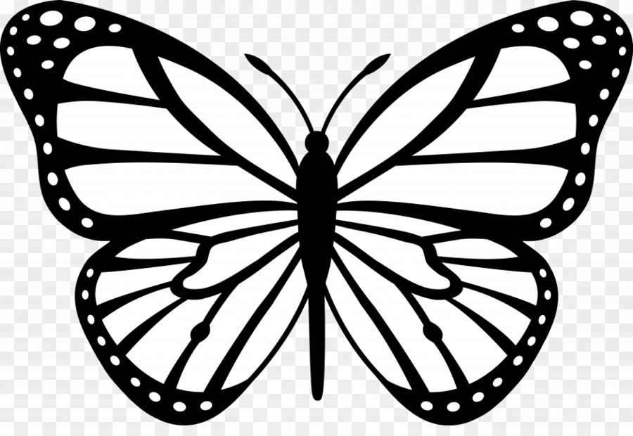 Butterfly outline black. And white png download