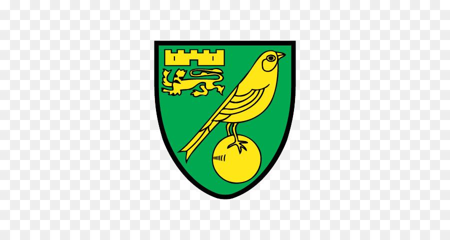 Carrow Road FIFA 18 Norwich City F.C. Newcastle United F.C