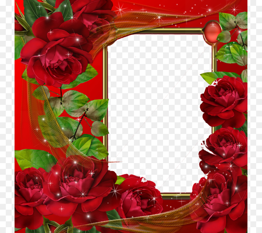 Picture frame Picture editor Application software - Red Flower Frame ...