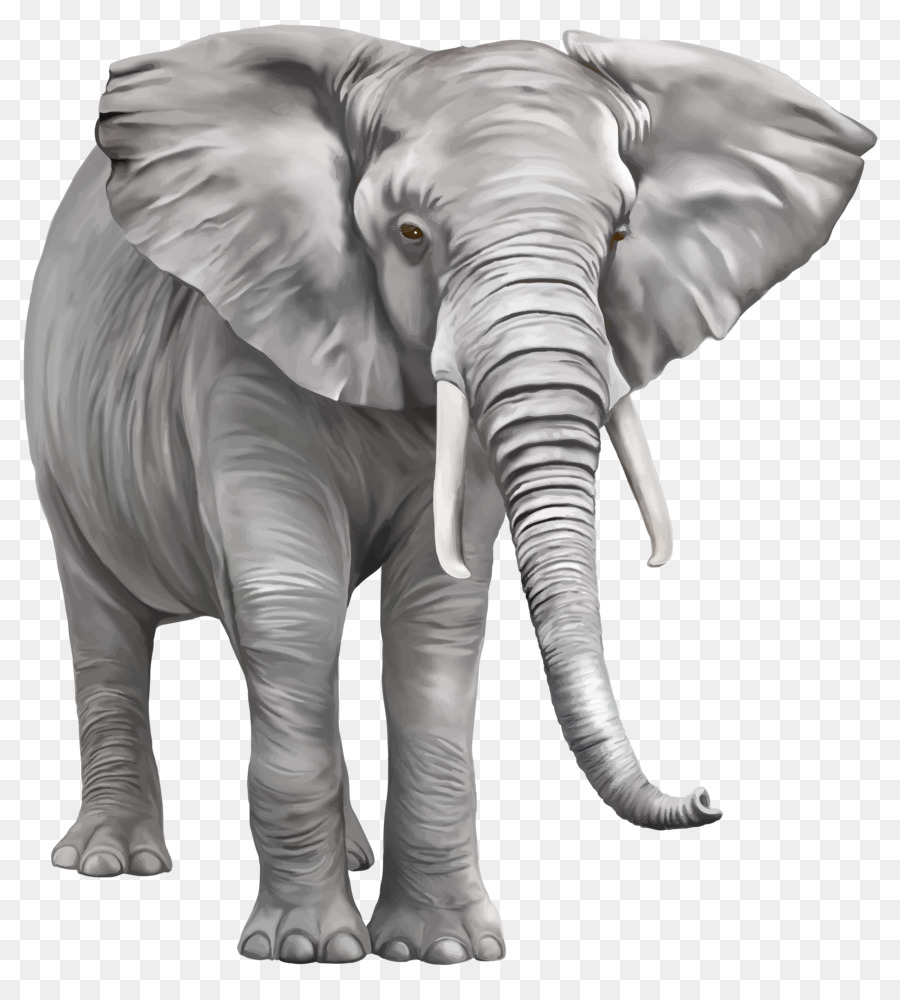 indian elephant clip art elephant png free download png Indian Elephant Design Art Project indian elephant clipart