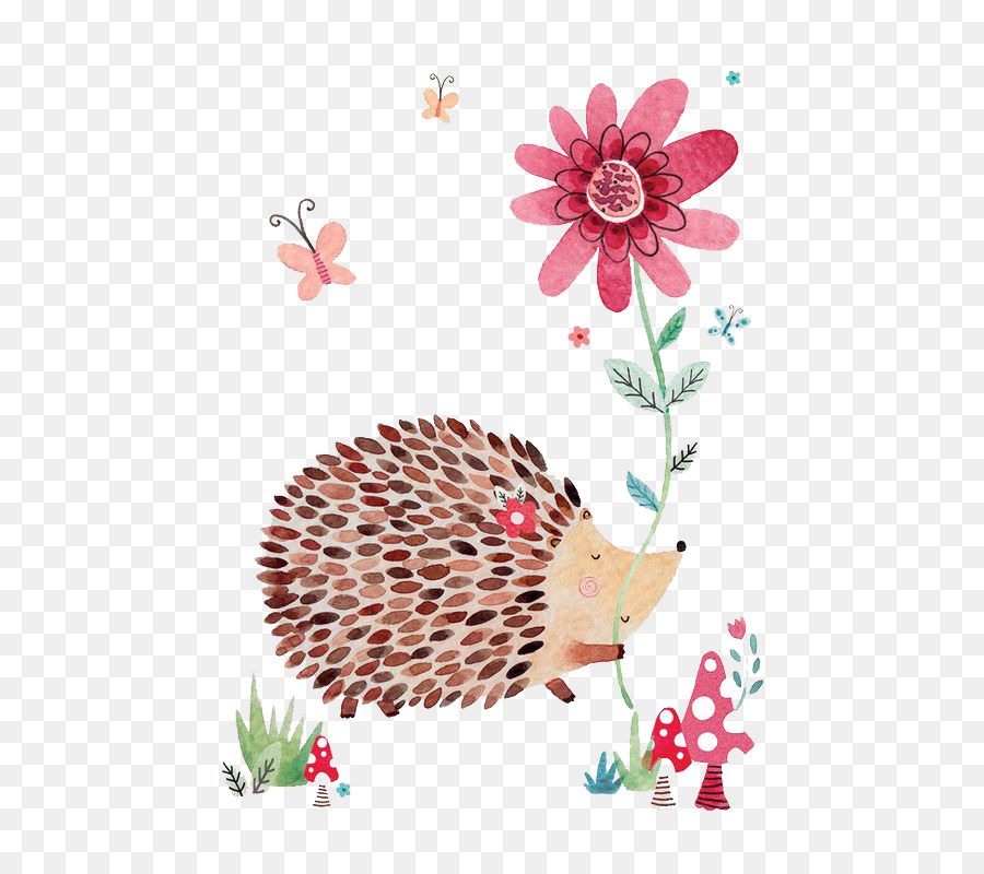 Greeting Card Drawing Idea Illustration Hedgehog With Flowers Png