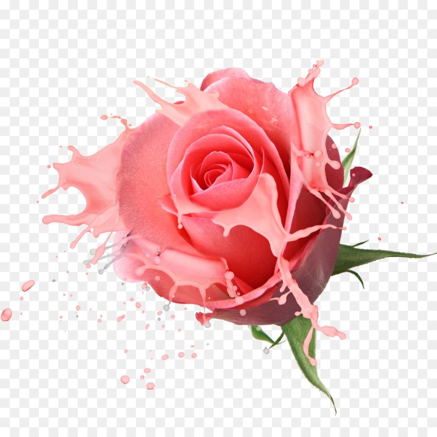 buquê de flores rosa de desenho iogurte rosa transparente