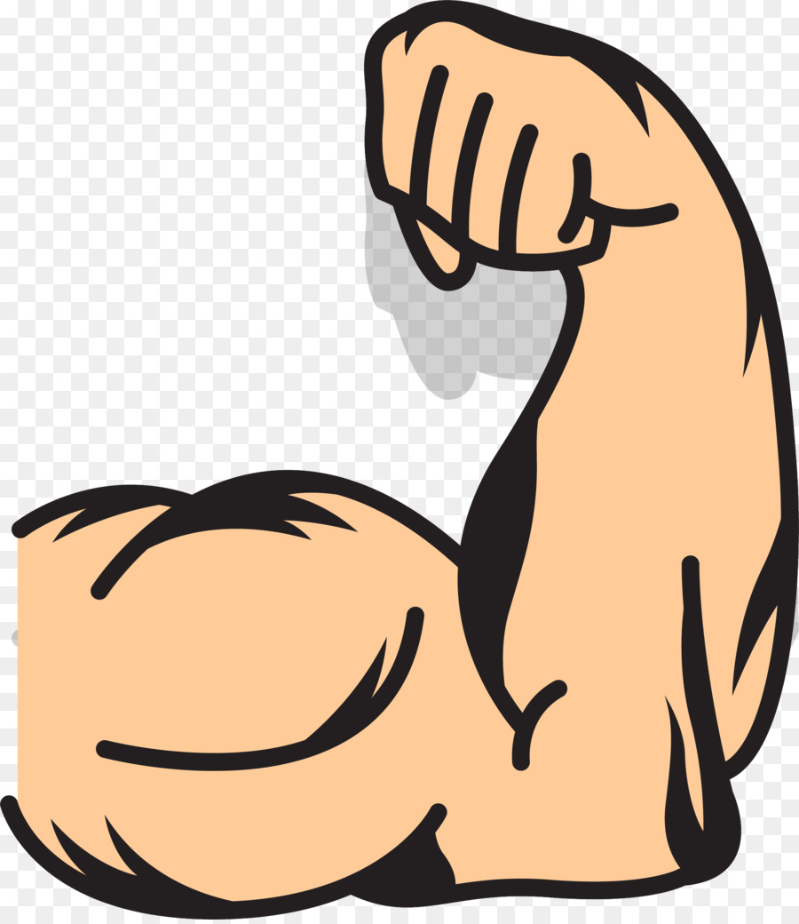 muscle arms muscle arms clip art strong arms png download 2006 rh kisspng com clipart armour clipart army