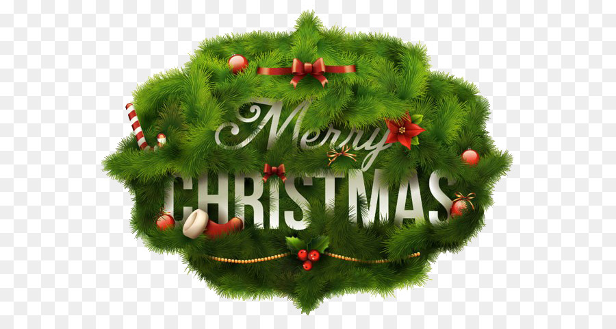 Christmas Evergreen Png Download 660 467 Free Transparent