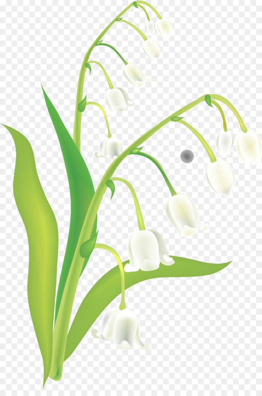 Lily of the valley euclidean vector hand painted lily of the lily of the valley euclidean vector hand painted lily of the valley izmirmasajfo