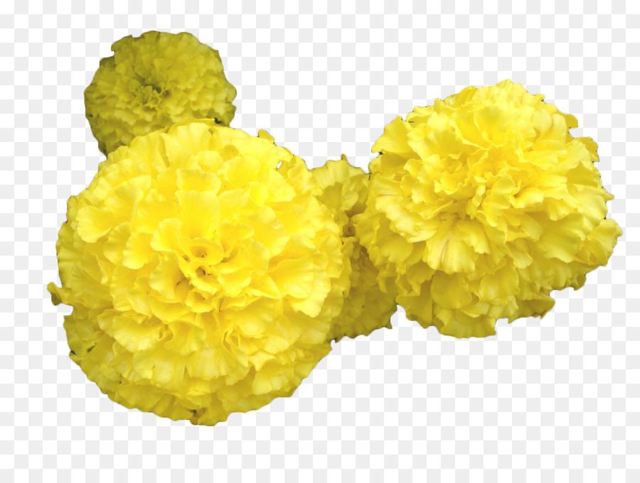 Mansu hill grand monument mexican marigold toran flower yellow mansu hill grand monument mexican marigold toran flower yellow marigold flower mightylinksfo