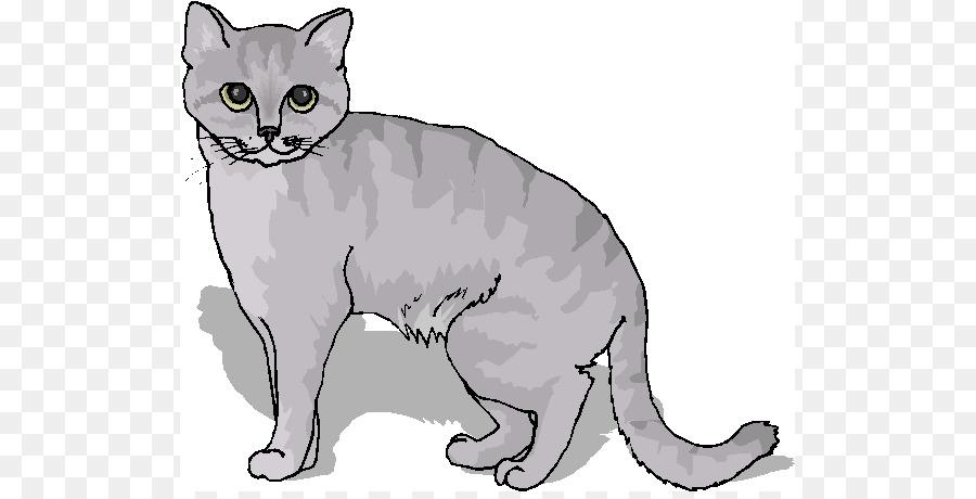 Burmese cat Manx cat American Wirehair Kitten Tabby cat - January ...