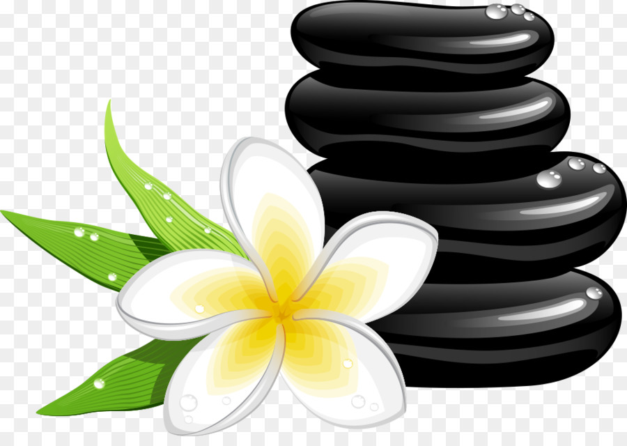 spa cosmetology massage clip art vector frangipani and stones png rh kisspng com