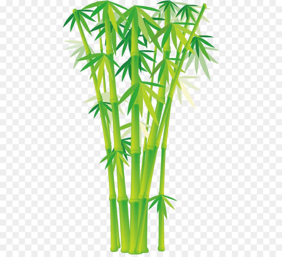 Bambus Euklidischen Vektor Clip Art Cartoon Bambus Vektor Png