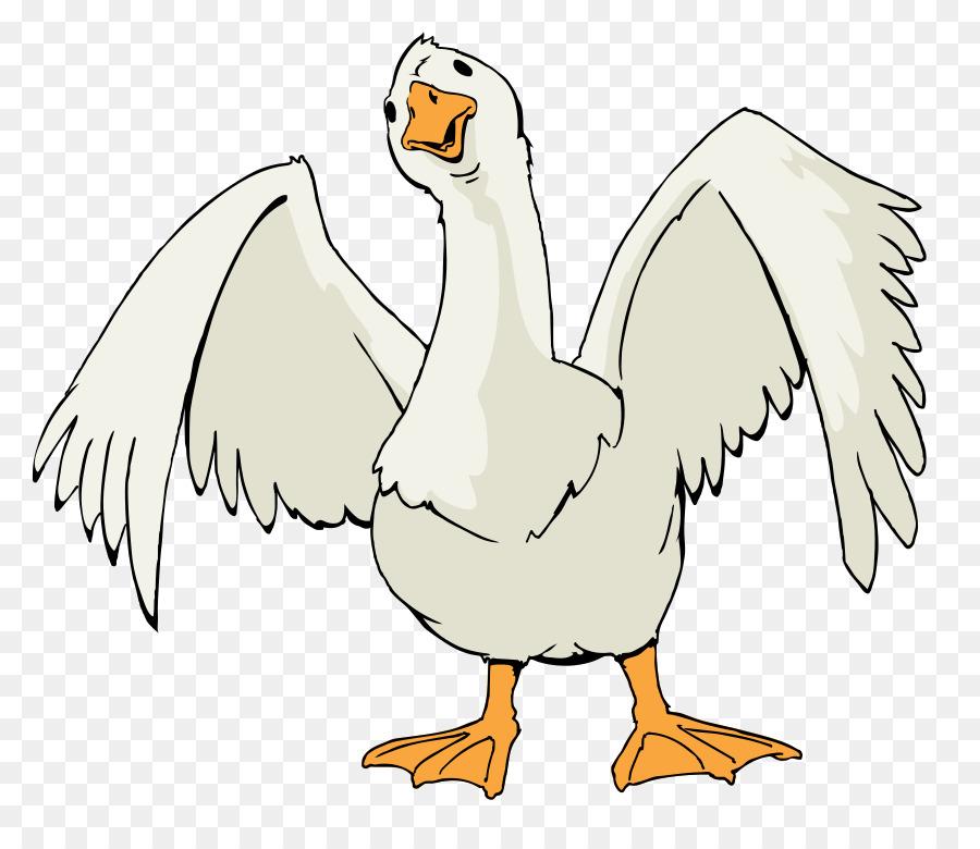 Canada Goose Bird Clip art - Ganso De Cliparts png dibujo ...