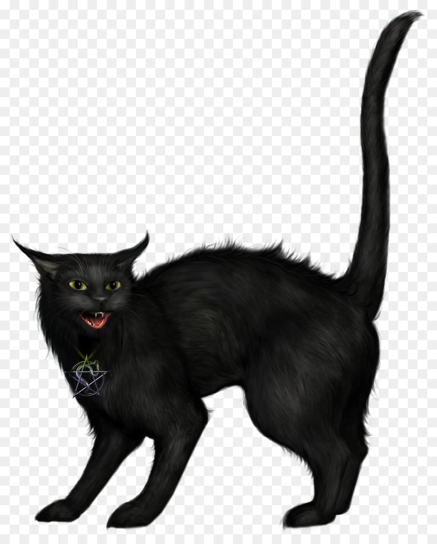 black cat halloween clip art - witch cat png download - 1240*1538