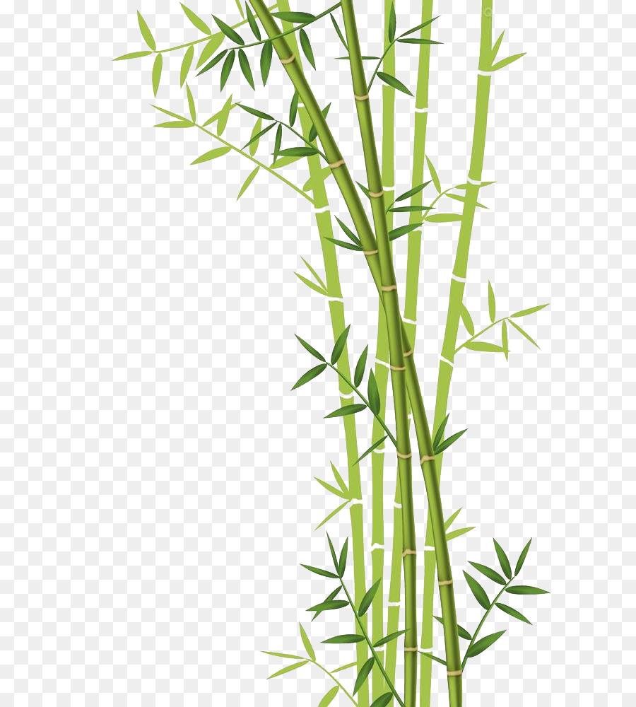Bamboo Forest Euclidean Vector Stock Photography Bamboo